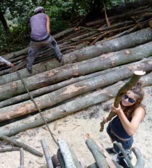 La legna